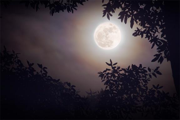 Super Moon by Ben Adams as seen on Flickr