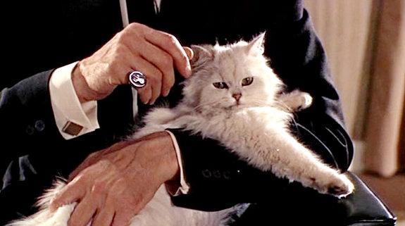 Ernst Stavro Blofeld e o seu gato