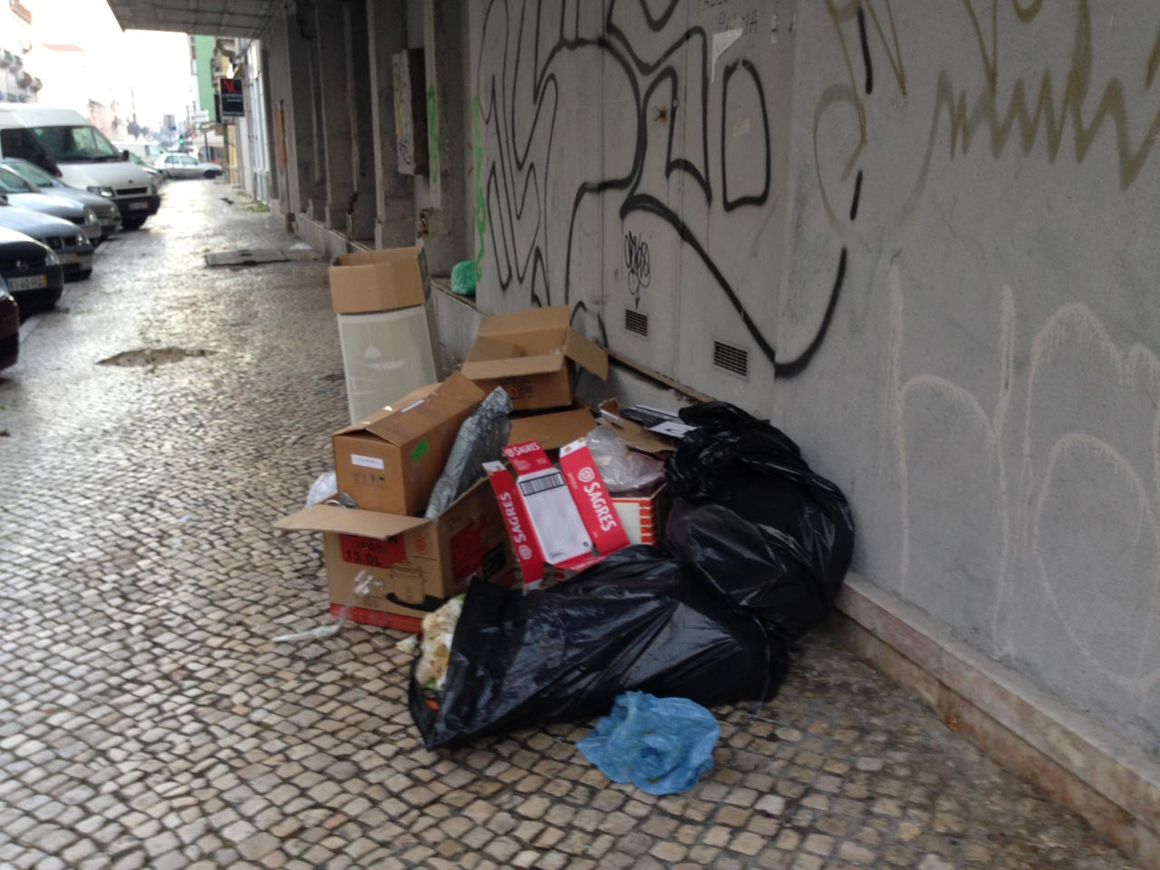 Lixo na rua em Lisboa. Mesmo na porta de casa - Pedro Rebelo